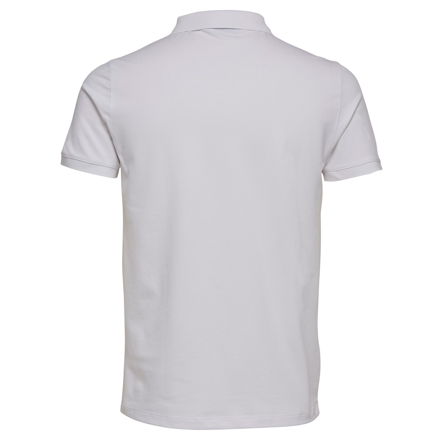 Cotton T Shirts For Men