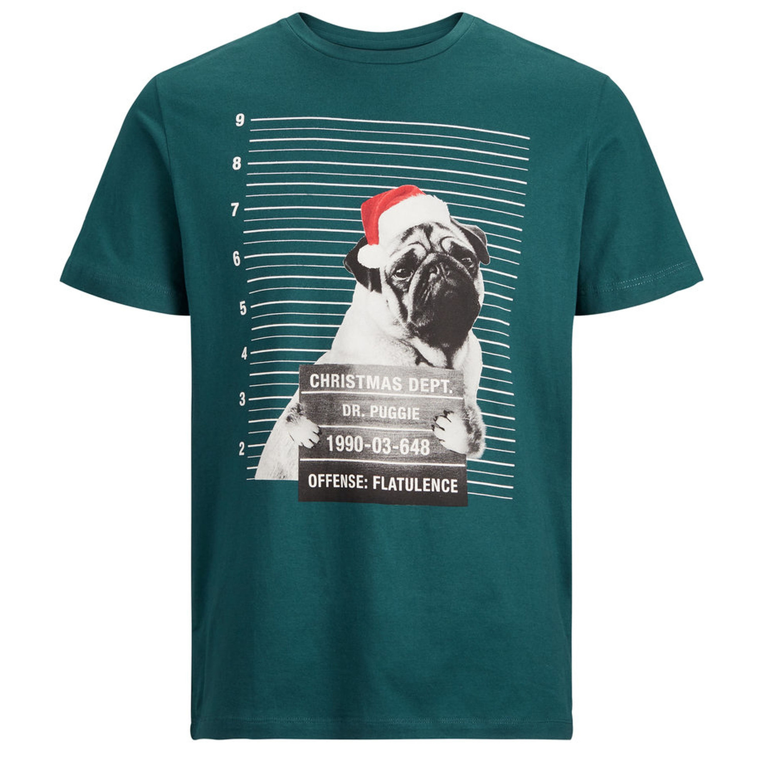 fd260bb460f0d Jack & Jones Crew Neck Jail Photo Dog Christmas Print T-shirt Deep Teal |  Jean Scene