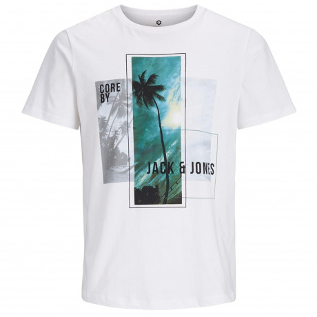 Jack & Jones Core Crew Neck Walcott Print T-shirt White | Jean Scene