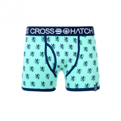 Crosshatch Pattern Boxer Shorts Underwear Bemuda Image
