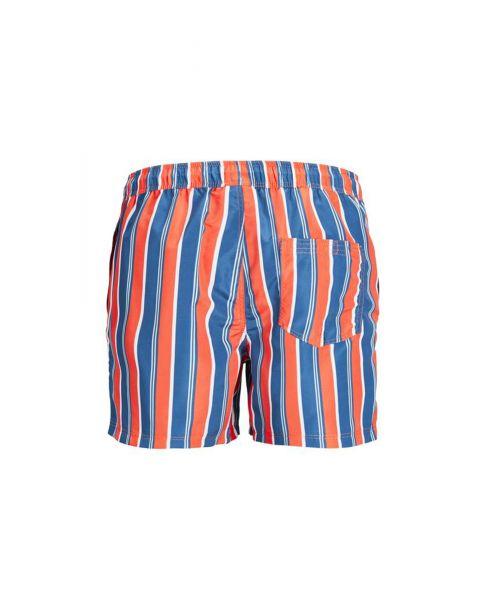 Jack & Jones Mens Mens Aruba Stripe Swim Shorts Dark Blue | Jean Scene